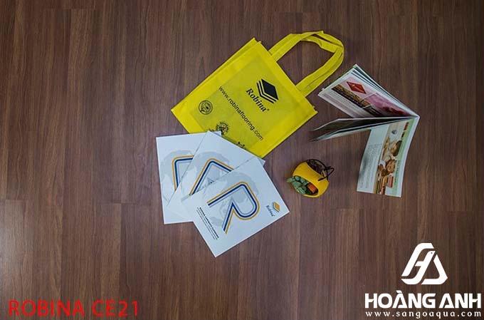 Sàn gỗ Robina Malaysia CE21